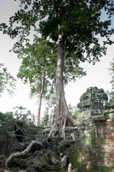 Cambodia-289