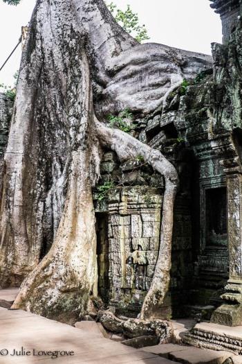 Cambodia-305