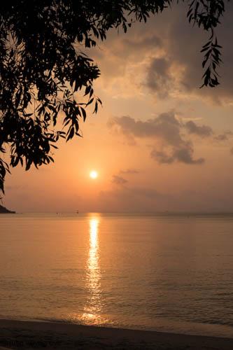 Thailand-209