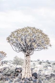 Namibia-10