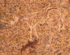 Namibia-312