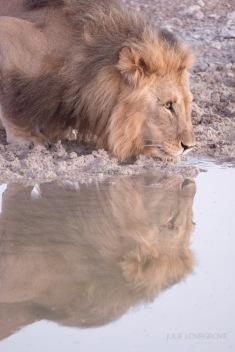 Namibia-348