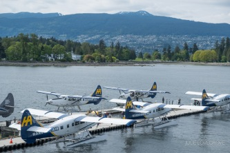 Sea 'planes are almost used like taxis here, constantly taking off and landing.