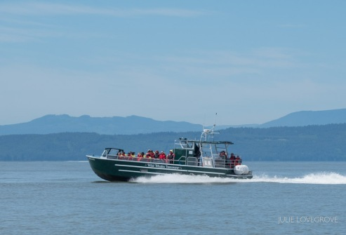 Another identical boat heading out