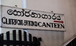 SriLanka-109