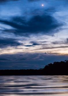 Borneo-513