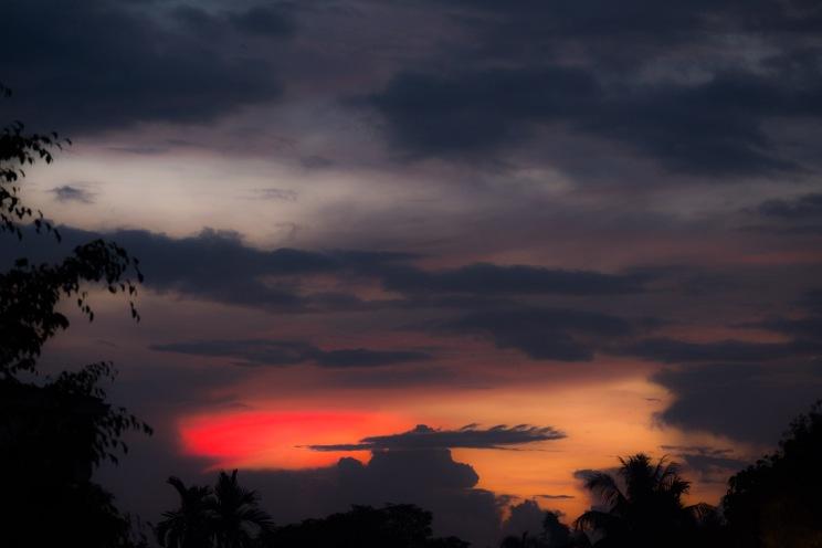 Borneo-514