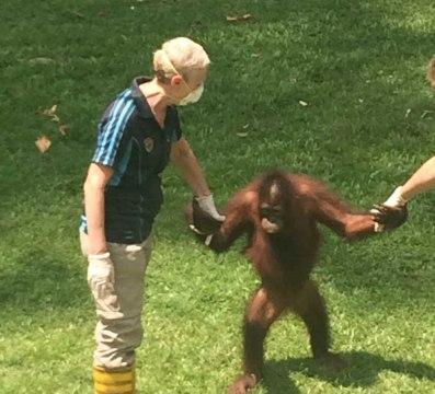 Borneo-572